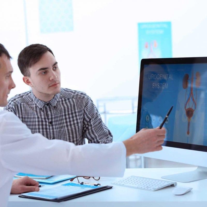 urologist explaining urogenital system